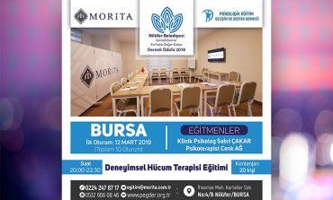 Deneyimsel Hücum Terapisi Eğitimi - BURSA